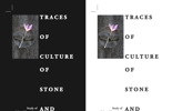 Aljoša Kotnjek: 'Traces of Culture of Stone and Flower in Ravnikar's Design', predavanje 6.11. u 16, predavaonica 317